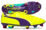 evopower-1-mixed-sg-sito
